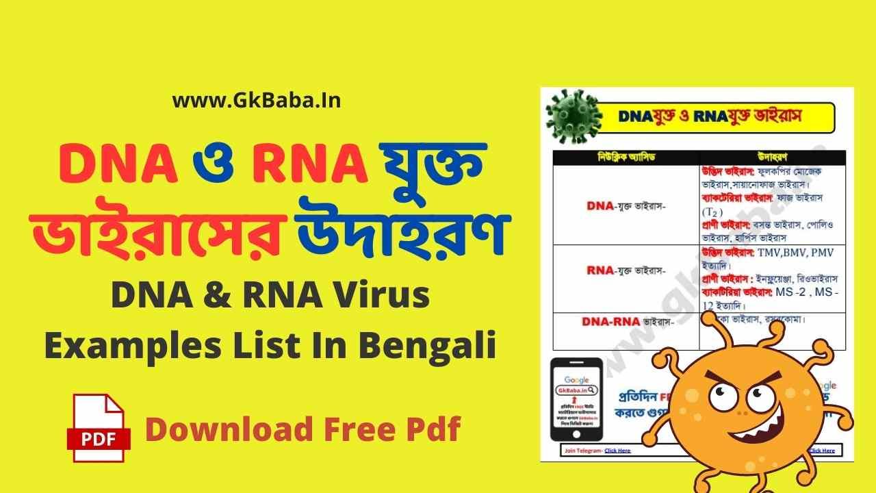 ডিএনএ-ও-আরএনএ-ভাইরাস-dna-rna-virus.jpg